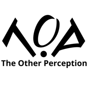 The Other Perception - Digital Marketing and Marketing Campaign Review